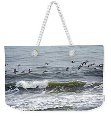 Classic Brown Pelicans Weekender Tote Bag by Betsy Knapp