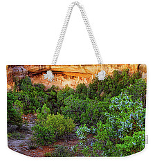 Weekender Tote Bag featuring the photograph Cliff Palace At Mesa Verde National Park - Colorado by Jason Politte
