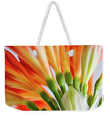 Clivia Miniata 5 Weekender Tote Bag by Shirley Mitchell