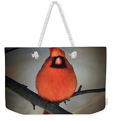 Weekender Tote Bag featuring the photograph Close Encounter On A Blustery Day by Lois Bryan