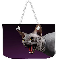 Close-up Aggressive Sphynx Cat Hisses On Purple Weekender Tote Bag