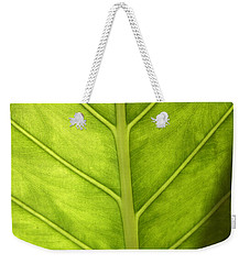 Close-up Of A Elephant Ear Weekender Tote Bag by Ralph A  Ledergerber-Photography
