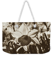Weekender Tote Bag featuring the photograph Close Up Of Daffodil Flower by Jacek Wojnarowski