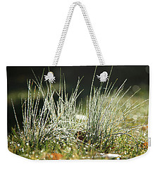 Close-up Of Dew On Grass, In A Sunny, Humid Autumn Morning Weekender Tote Bag