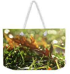 Close-up Of Dry Leaves On Grass, In A Sunny, Humid Autumn Morning Weekender Tote Bag