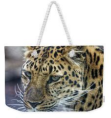 Close Up Of Leopard Weekender Tote Bag