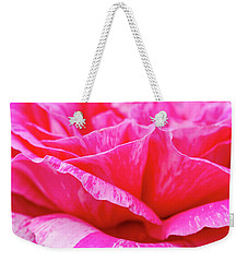 Close Up Of Variegated Pink And White Rose Petals Weekender Tote Bag by Teri Virbickis
