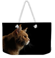 Close-up Portrait Ginger Maine Coon Cat Isolated On Black Background Weekender Tote Bag
