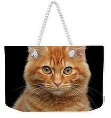 Close-up Portrait Of Ginger Kitty On Black Weekender Tote Bag