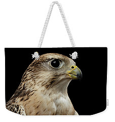 Close-up Saker Falcon, Falco Cherrug, Isolated On Black Background Weekender Tote Bag