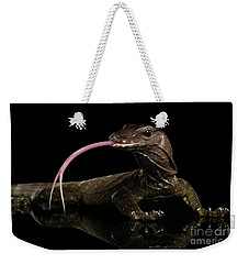 Close-up Varanus Rudicollis Isolated On Black Background Weekender Tote Bag