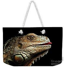 Close-upgreen Iguana Isolated On Black Background Weekender Tote Bag by Sergey Taran