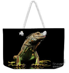 Closeup Green Iguana Isolated On Black Background Weekender Tote Bag