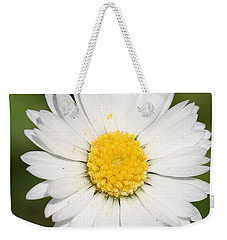 Closeup Of A Beautiful Yellow And White Daisy Flower Weekender Tote Bag by Tracey Harrington-Simpson