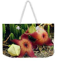 Closeup Of A Desert Starfish Weekender Tote Bag