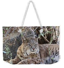 Closeup Of Bobcat Weekender Tote Bag