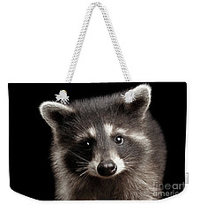 Closeup Portrait Cute Baby Raccoon Isolated On Black Background Weekender Tote Bag