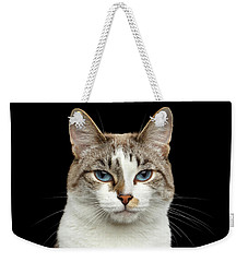 Closeup Portrait Of Face White Cat, Blue Eyes Isolated Black Background Weekender Tote Bag