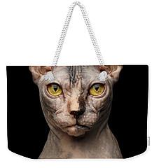 Closeup Portrait Of Grumpy Sphynx Cat, Front View, Black Isolate Weekender Tote Bag