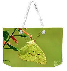 Clouded Sulphur Butterfly Macro Weekender Tote Bag
