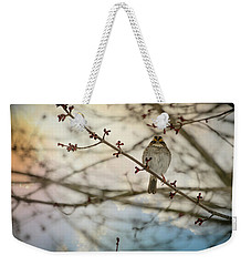Weekender Tote Bag featuring the photograph Cloudy Finch by Trish Tritz