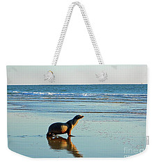 Coastal Friends Weekender Tote Bag