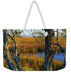 Weekender Tote Bag featuring the photograph Coastal Winter Scene by Laura Ragland