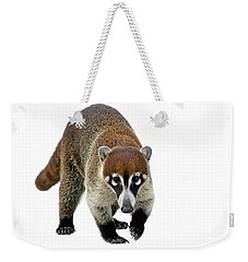 Coatimundi Weekender Tote Bag by Teresa Zieba