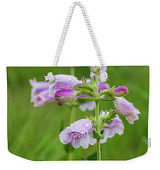 Cobea After Rain Weekender Tote Bag by Shelly Gunderson