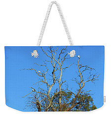 Weekender Tote Bag featuring the photograph Cocky Tree  by Mark Blauhoefer