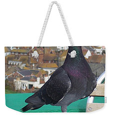 Weekender Tote Bag featuring the photograph Coffee Shop Pigeon by Jolanta Anna Karolska