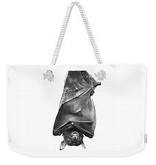 Coffie The Fruit Bat Weekender Tote Bag by Abbey Noelle
