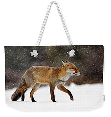 Cold As Ice - Red Fox In A Snow Blizzard Weekender Tote Bag by Roeselien Raimond