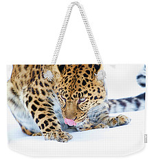 Cold Leopard In Snow Weekender Tote Bag by Steve McKinzie