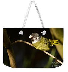 Collared Finch-bill Weekender Tote Bag