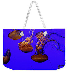 Collection Of Jellyfish Weekender Tote Bag