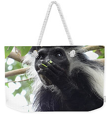 Colobus Monkey Eating Leaves In A Tree 2 Weekender Tote Bag