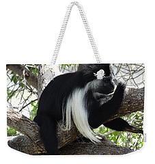 Colobus Monkey Resting In A Tree Weekender Tote Bag