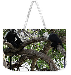 Colobus Monkeys Sitting In A Tree Weekender Tote Bag