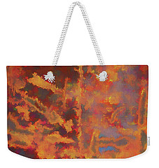 Weekender Tote Bag featuring the photograph Color Abstraction Lxxi by David Gordon
