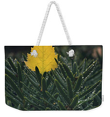 Chilled Weekender Tote Bag