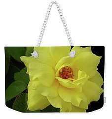 Work Of Nature Weekender Tote Bag