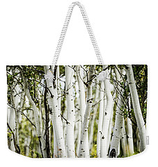 Colorado Aspens Weekender Tote Bag by Dawn Romine