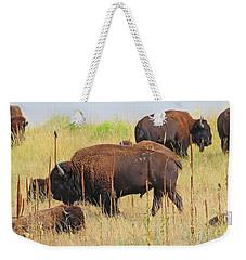 Colorado Buffalo  0093 Weekender Tote Bag