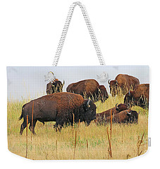 Colorado Buffalo  0099 Weekender Tote Bag
