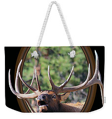 Weekender Tote Bag featuring the photograph Colorado Bull Elk by Shane Bechler