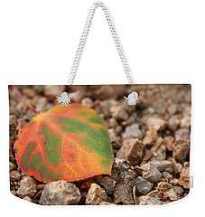 Weekender Tote Bag featuring the photograph Colorado Fall Colors by Christin Brodie