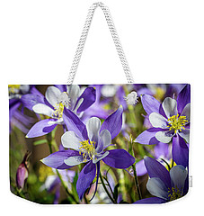 Colorado State Flower Blue Columbines Weekender Tote Bag by Teri Virbickis