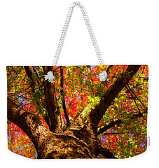 Colorful Autumn Abstract Weekender Tote Bag