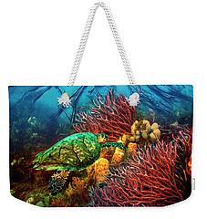 Weekender Tote Bag featuring the photograph Colorful Coral Seas by Debra and Dave Vanderlaan